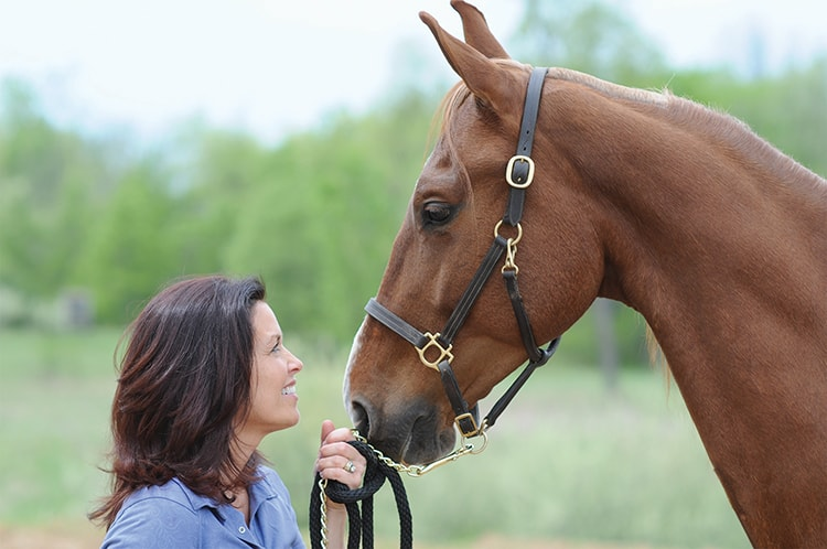 Horse-Equine Therapy